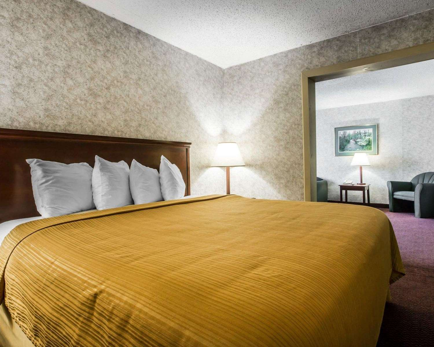 Suite - Quality Inn & Suites Kingston