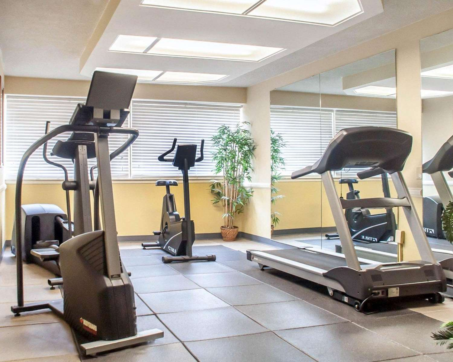 Fitness/ Exercise Room - Quality Inn & Suites Vestal