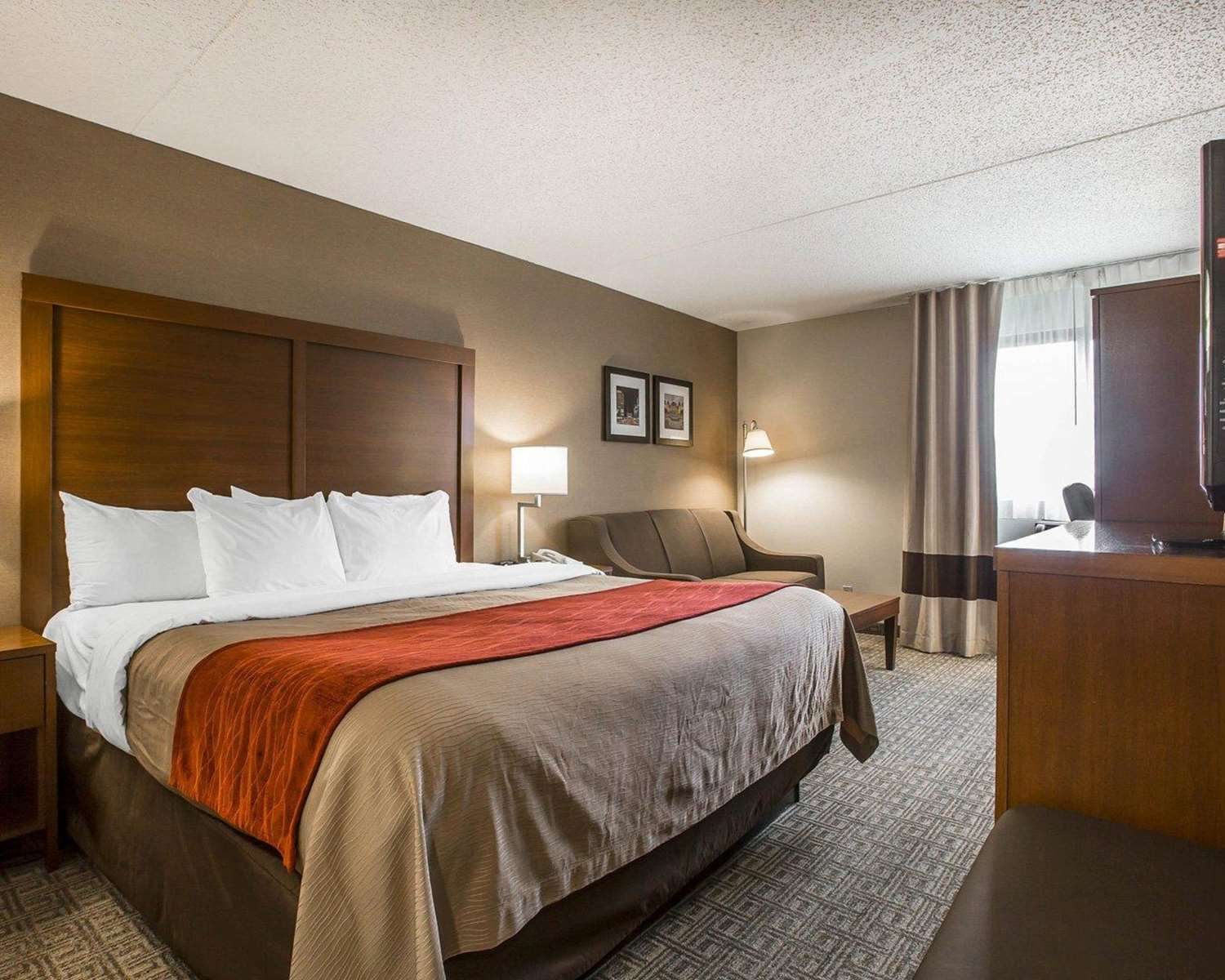Room - Comfort Inn Cohoes