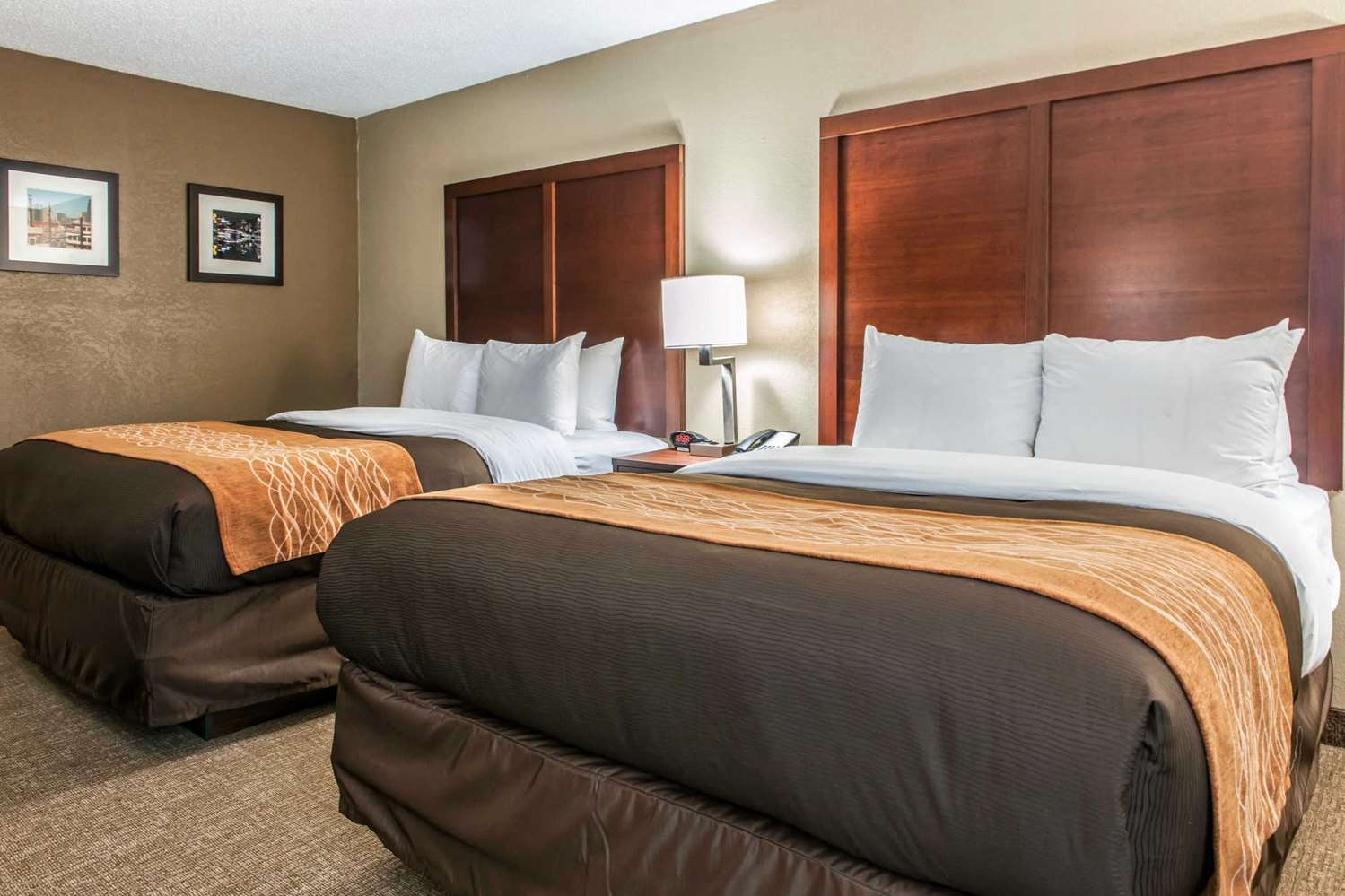 Room - Comfort Inn Blue Ash